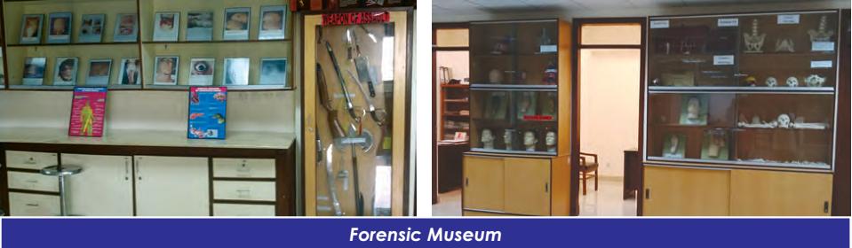 Forensic Medicine4